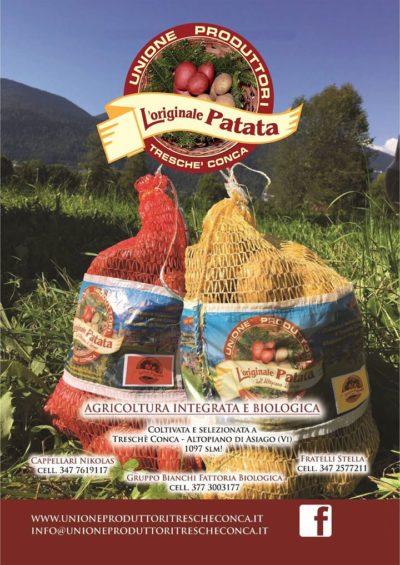 originale patata