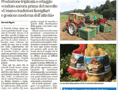 Sul Giornale di Vicenza – La Patata di Treschè Conca